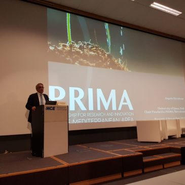 PRIMA info and networking event 8 November 2017