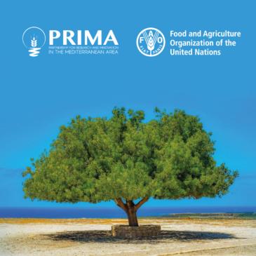Partnership strategica PRIMA – FAO: a Roma una giornata di riflessione sull'agroalimentare nel Mediterraneo