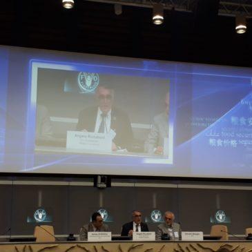 Workshop PRIMA – FAO, le immagini e gli interventi