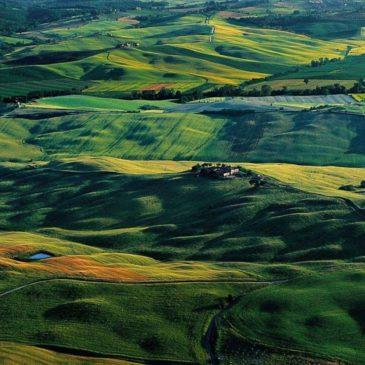 Sistemi agroalimentari sostenibili: una prospettiva mediterranea